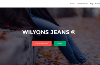 WILYONS JEANS